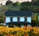 Vineyard-Home-small